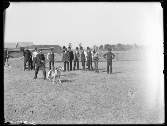 Dog coursing meet at Kearney, Nebraska - Baroness Beatrice and Tight Brush in slips