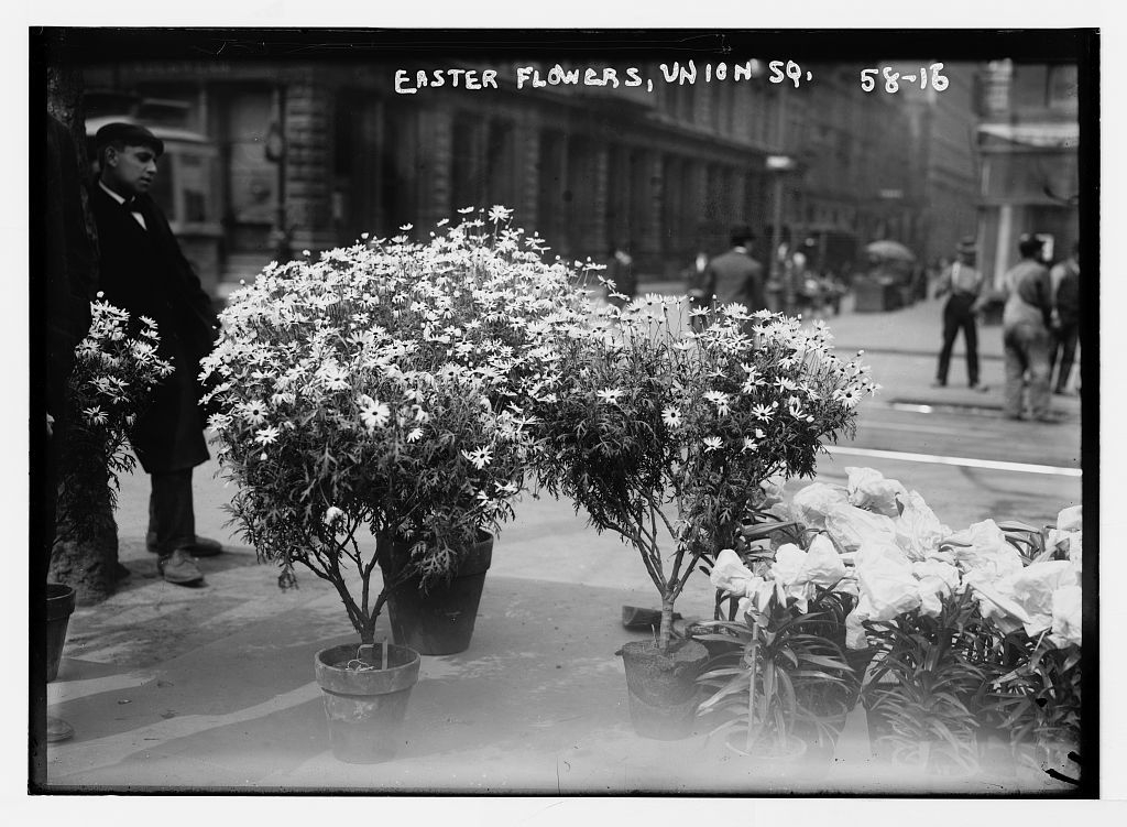 Easter flowers for sale in Union Square, New York