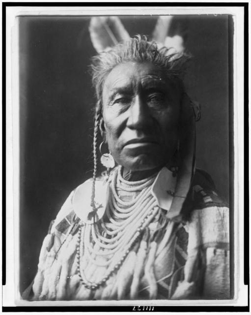 [Fish Shows, an Apsaroke Indian, head-and-shoulders portrait, facing front, pompadour, temple braids painted white, 2 eagle feathers, disk earring, shell beads with large disk ornaments, beaded buckskin shirt]