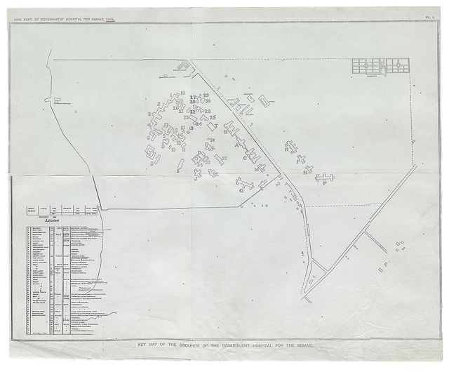 [Government Hospital for the Insane (Saint Elizabeths Hospital), Washington, D.C. Site plan]