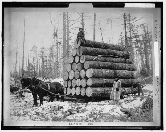Load of logs