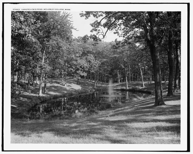 Longfellow's pond, Wellesley College, Mass.