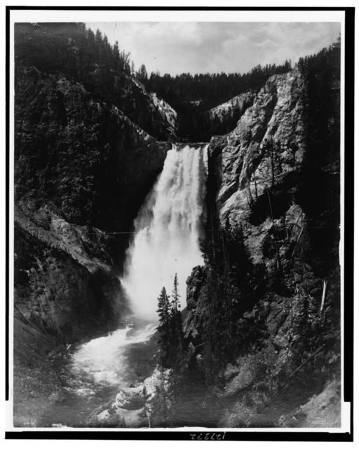 Lower Falls of Yellowstone, Wyoming