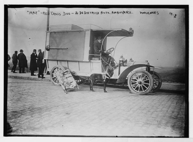 Max - Red Cross dog and Dedietrich Auto, ambulance, Vincennes