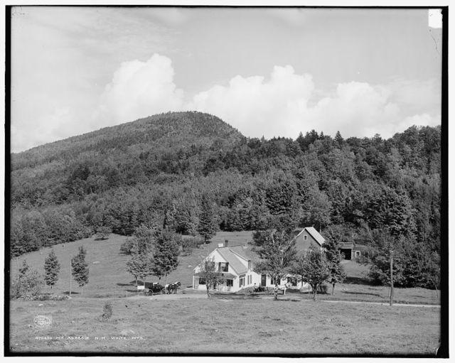 Mt. Agassiz, N.H., White Mts.