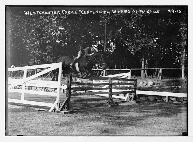 """Plainfield Horse Show, """"Centennial"""", of Westchester Farms jumping hurdle, winner"""