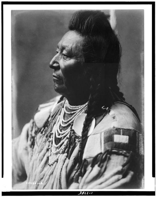 [Plenty Coups, Crow Indian, head-and-shoulders portrait, facing left, pompadour, temple braids, beaded buckskin shirt, shell beads around neck]