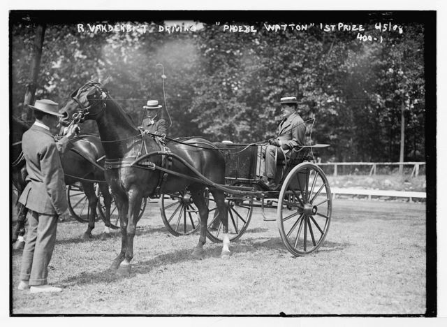 "R. Vanderbilt driving ""Phoebe Watton"" - 1st prize [in horse and buggy, Plainfield Horse Show]"
