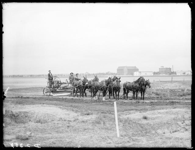 Road graders at work near the military school, Kearney, Buffalo County, Nebraska