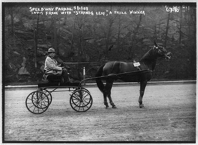 Speedway Parade. Louis Frank with Strange Leaf, a prize winner. May 1, 1908