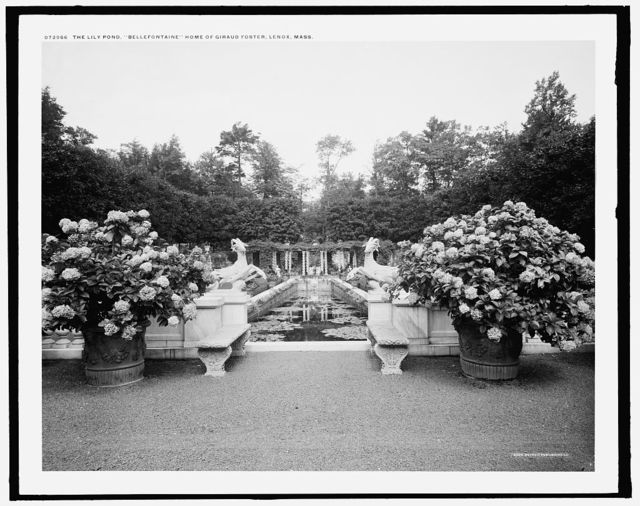 The Lily pond, Bellefontaine, home of Giraud Foster, Lenox, Mass.