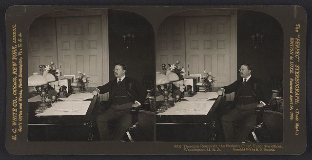 Theodore Roosevelt, the nation's chief, executive offices, Washington, U.S.A.