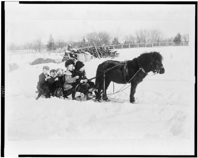 [Children on a pony-drawn sled]