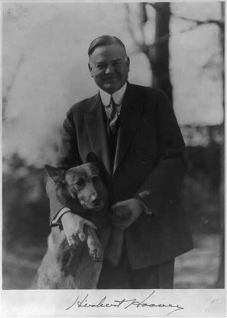 [Herbert Hoover, half length portrait, holding large dog up by front legs, facing front]