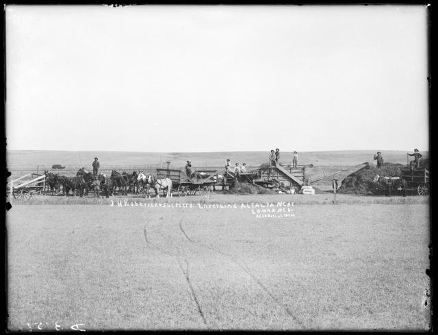 J.H. Robertson and Shephard crew threshing alfalfa on farm near Lomax, Nebraska.