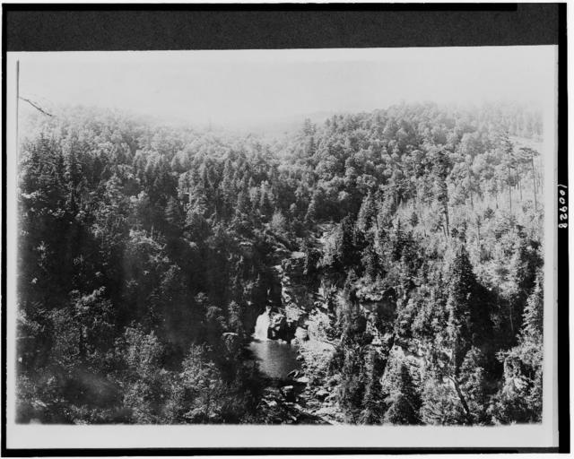 Mt. Mitchell Reservation, N.C. Bynums Bluff