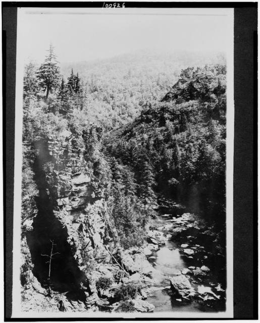 Mt. Mitchell Reservation, N.C. Gorge of the Linville River, Jonas Ridge in background