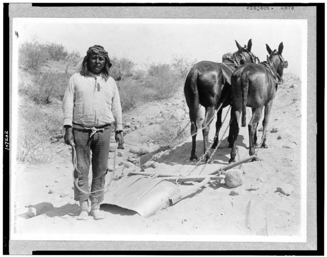 [Salt River Project, Arizona. Cushong, or, fat Hen, a laborer on the Salt River Project, with two mules]