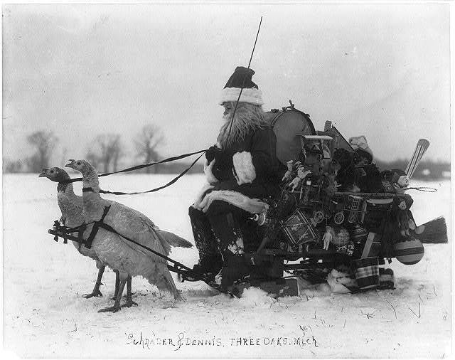 "[""Santa Claus"" with Christmas toys on a sled drawn by white turkeys]"