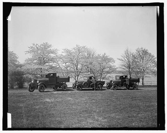 [Trucks near Cherry blossom trees, Washington, D.C.]