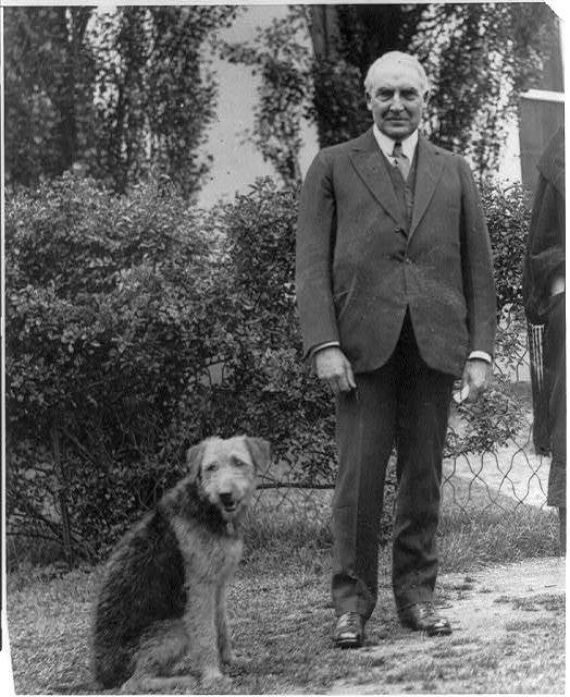 [Warren G. Harding, full length, standing, facing front; with his airedale Laddie Boy]