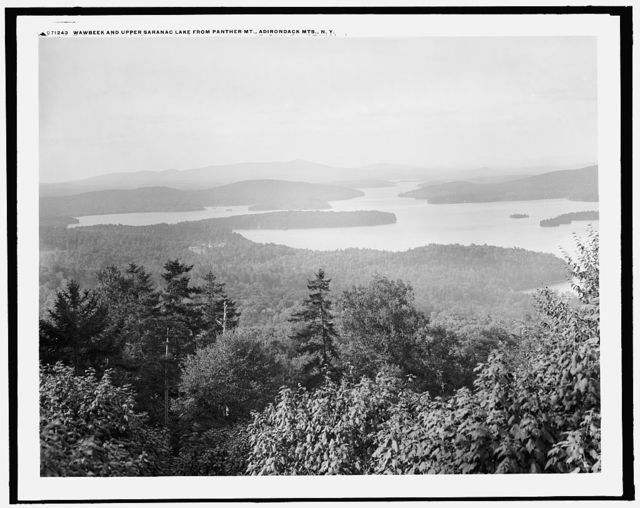 Wawbeek and Upper Saranac Lake from Panther Mt. [i.e. Mountain], Adirondack Mts., N.Y.