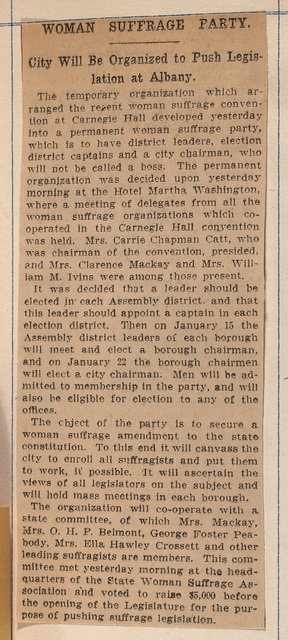 Woman Suffrage Party: Organization and mission statement