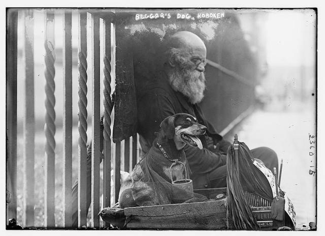 Beggar's dog - Hoboken