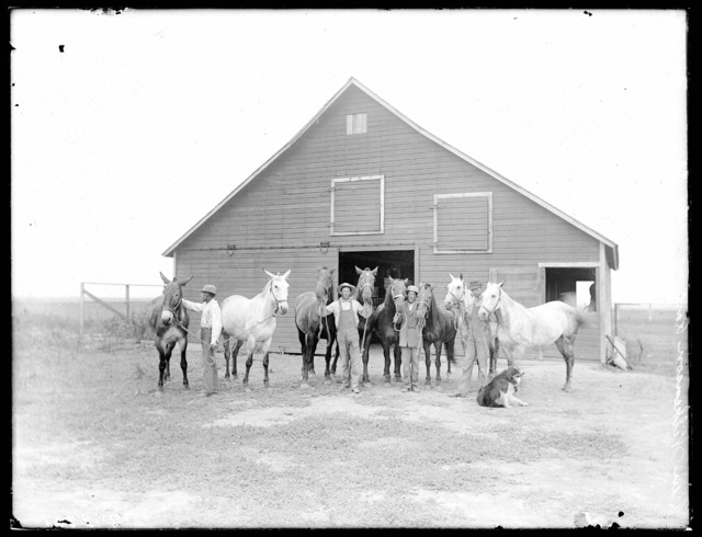 Ben Wilkenson, Ravenna, Buffalo County, Nebraska.