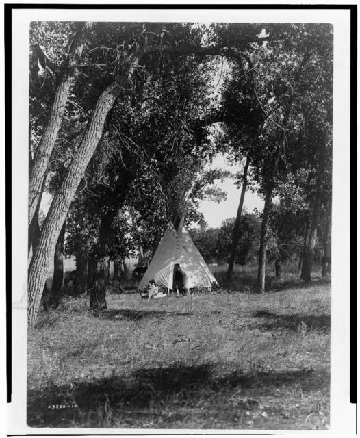 Camp in the cottonwoods--Cheyenne