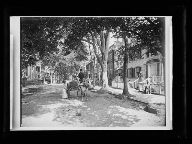 [Carriage in street of historic neighborhood]