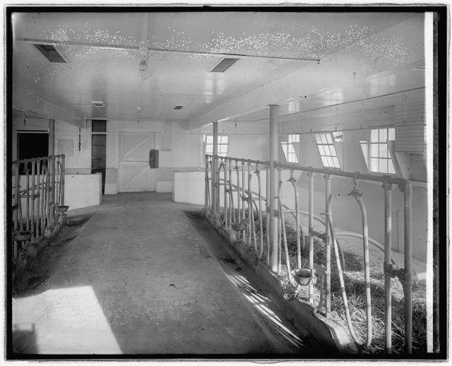 Chestnut Farms Dairy, [Washington, D.C.]