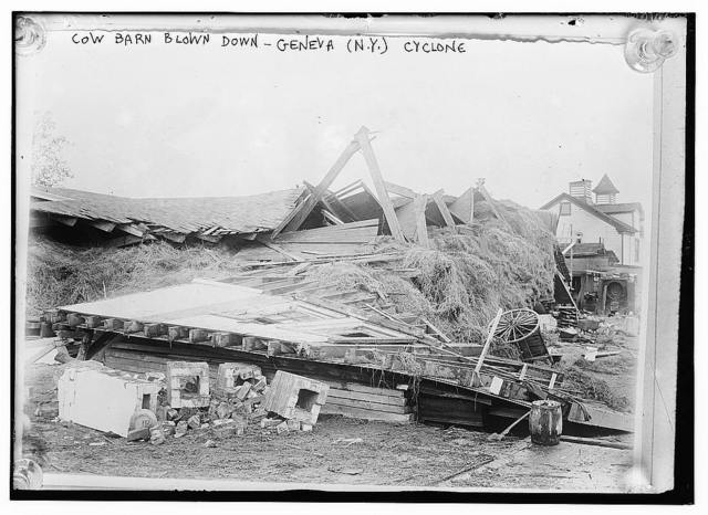 Cow barn blown down, Geneva, N.Y., cyclone