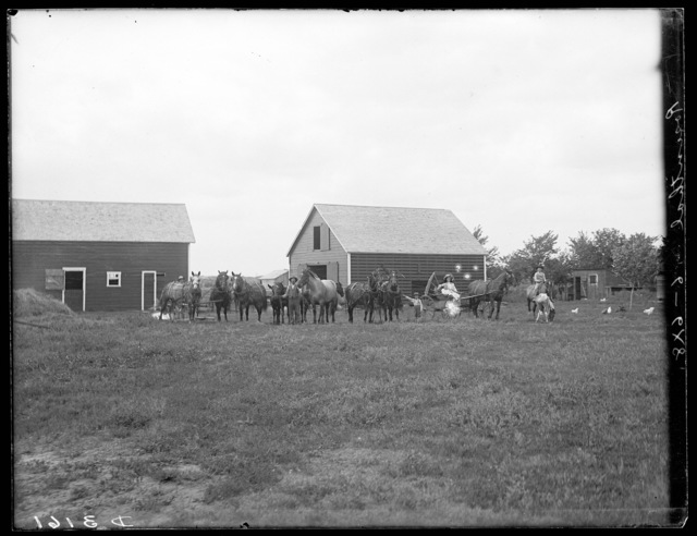 Family and teams of horses outside barn owned by A.C. Rosenthalls, southeast of Gibbon, Nebraska.