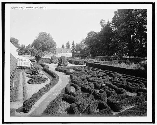 Flower gardens at Mt. Vernon