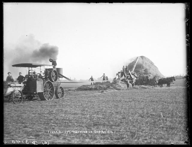 Frank Dority's  steam threshing machine in operation north of Shelton, Buffalo County, Nebraska.