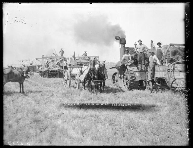Fred L. Scheike threshing crew south of Shelton, Buffalo County, Nebraska.