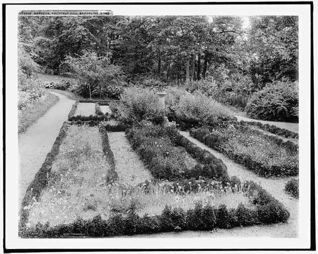 Gardens, Chestnut Hill, Brookline [sic], Mass.