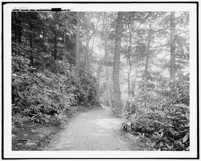 Laurel Lane, White Sulphur Springs, W. Va.