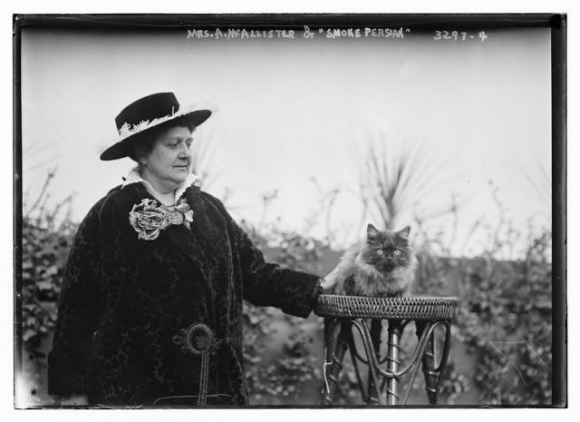 """Mrs. A.McAllister and """"Smoke Persian"""" cat"""