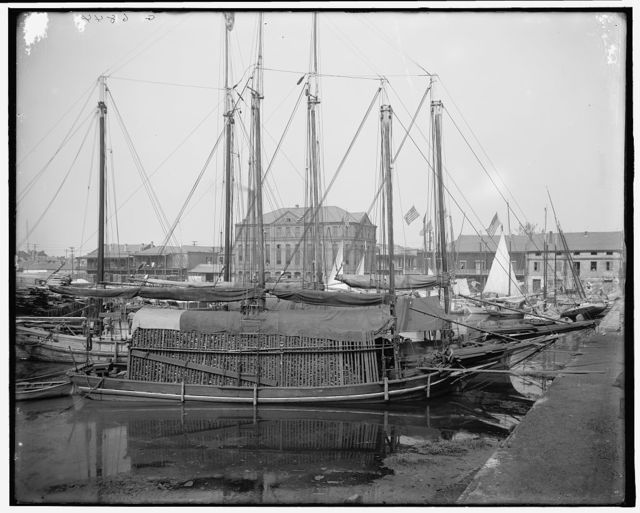 [Oyster and charcoal luggers in the old basin, New Orleans, La.]