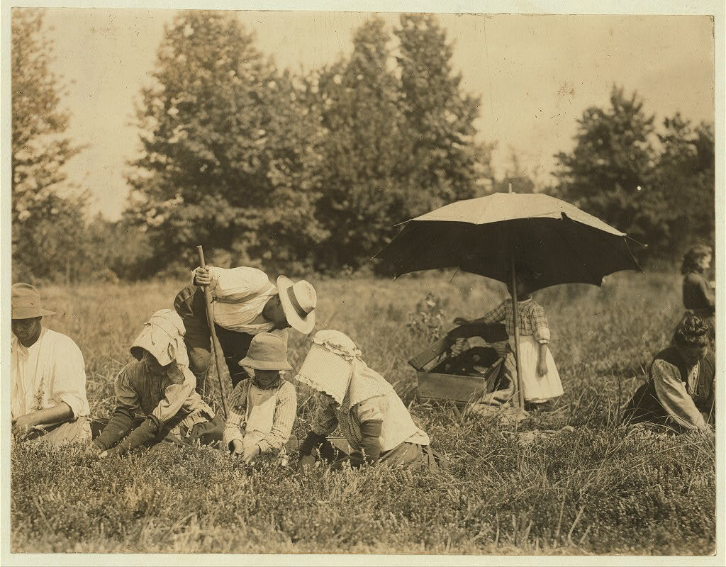 Pete, the Padrone, and family and neighbors. Girl tending baby in sun. Forsythe's Bog, Turkeytown, near Pemberton, N.J. Sept. 29, 1910. Witness E. F. Brown,.  Location: Pemberton, New Jersey / Photo by Lewis W. Hine.