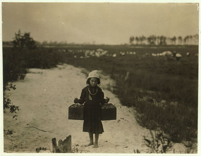Rose Biodo, 1216 Annan St., Philadelphia. 10 years old. Working 3 summers. Minds baby and carries berries, two pecks at a time. Whites Bog, Brown Mills, N.J. This is the fourth week of school and the people here expect to remain two weeks more. Sept. 28, 1910. Witness E. F. Brown.  Location: Browns Mills, New Jersey / Photo by Lewis W. Hine.