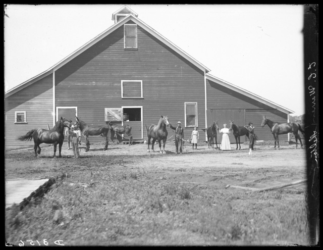 Several horses and people in front of barn on farm of E.C. Warren south of Shelton, Nebraska.