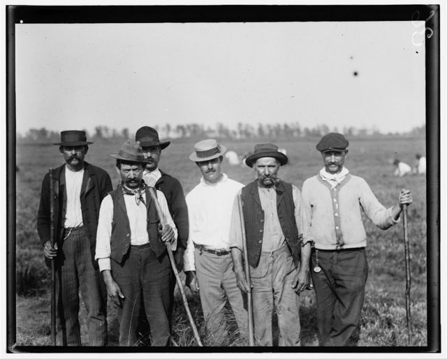 Some of the padrones on Whites Bog, Browns Hills [i.e., Mills], N.J. The chief padrone (in straw hat) is Gus Denato (see report of E.F. Brown). Sept. 28, 1910. Witness, E.F. Brown.  Location: Browns Mills, New Jersey / Photo by Lewis W. Hine.