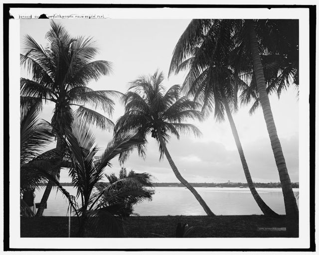 Sunset on Lake Worth, Palm Beach, Fla.
