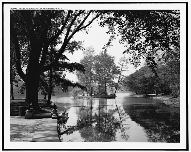 The Lake, Prospect Park, Brooklyn, N.Y.