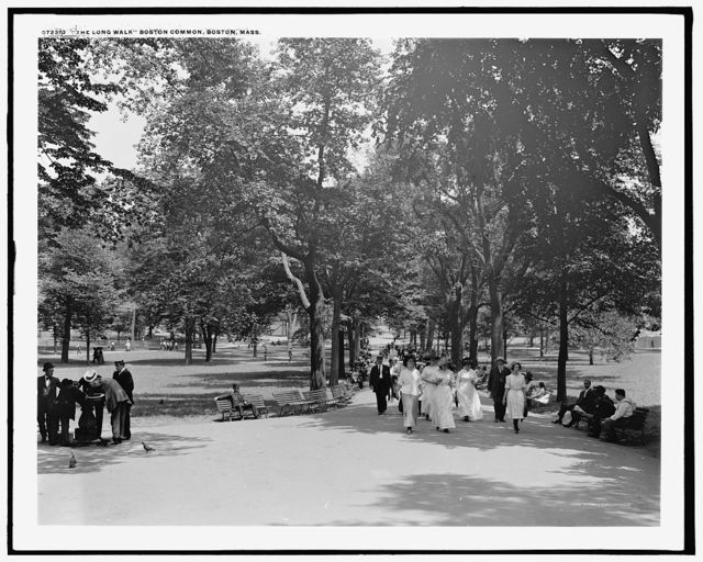 The Long walk, Boston Common, Boston, Mass.