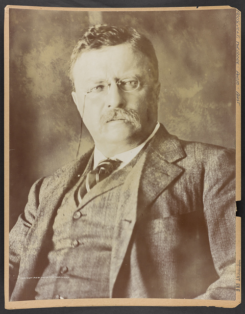 [Theodore Roosevelt, bust portrait, facing front]
