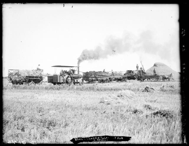 Threshing crew on farm of King and Hanson, west of Gibbon, Nebraska.